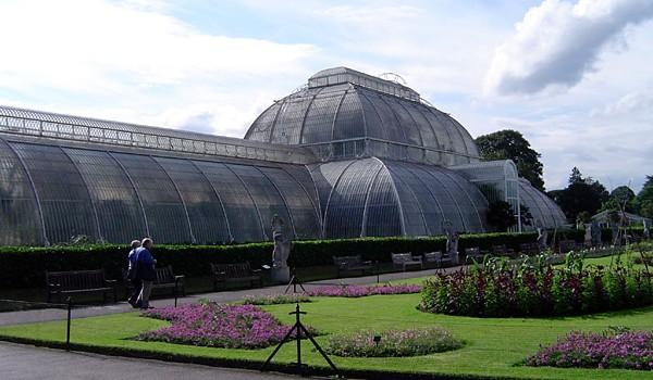 4 професионални тайни при поддръжка на градини