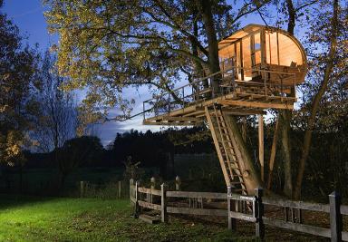 Как да построим къщичка на дърво – 8 полезни съвета
