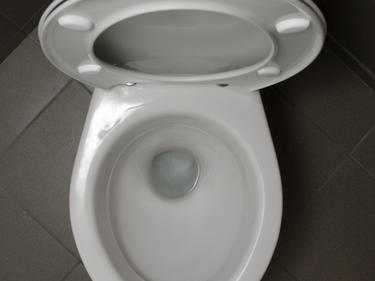 Как да действаме при запушена тоалетна