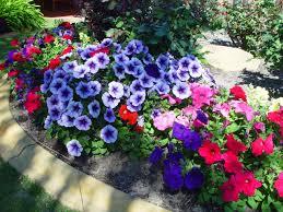 Как да поддържаме градината си по-лесно