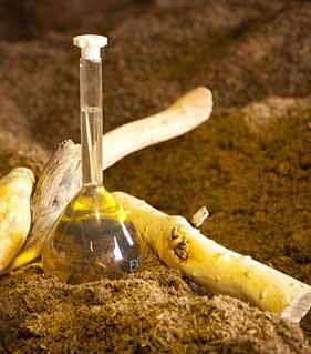 Защо трябва винаги да имаме етерично масло от сандалово дърво у дома