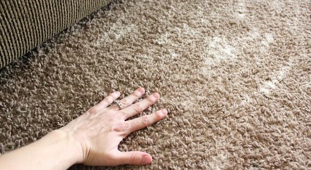 Как да почистим килима от лоши миризми