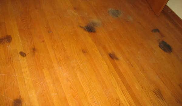 10 съвета срещу най-големите врагове на вашия дървен под