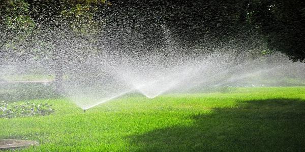 Поливни системи – оптимално управление на водата