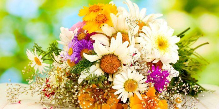 Модата сред цветята