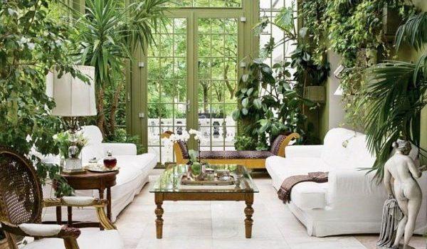 Как да разположим стайните растения у дома