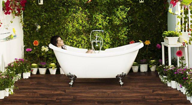 Топ 6 растения за овлажняване на въздуха у дома